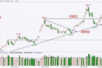 中粮期货试错交易6月4日市场观察